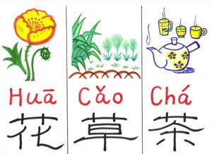อักษรจีน อักษรผสม radical หญ้า