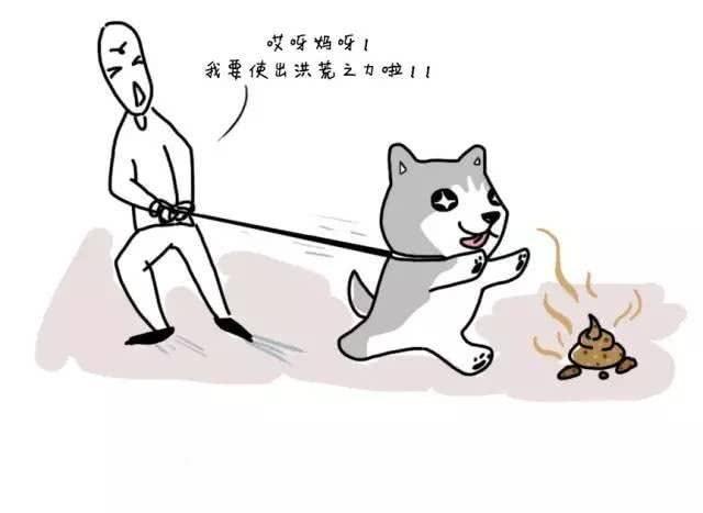 狗改不了吃屎